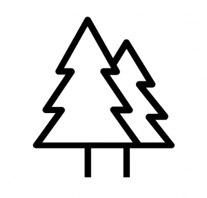 MY FOREST Logo